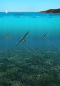 Deep Green Tidal Array