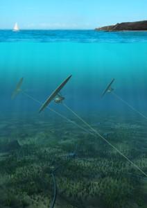 Deep Green Tidal Array