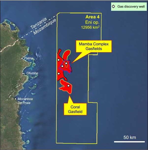 approval for investment plan coral south project