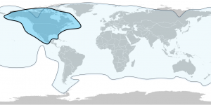 satellite coverage